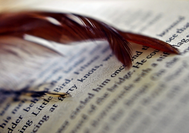Feather on an open book.